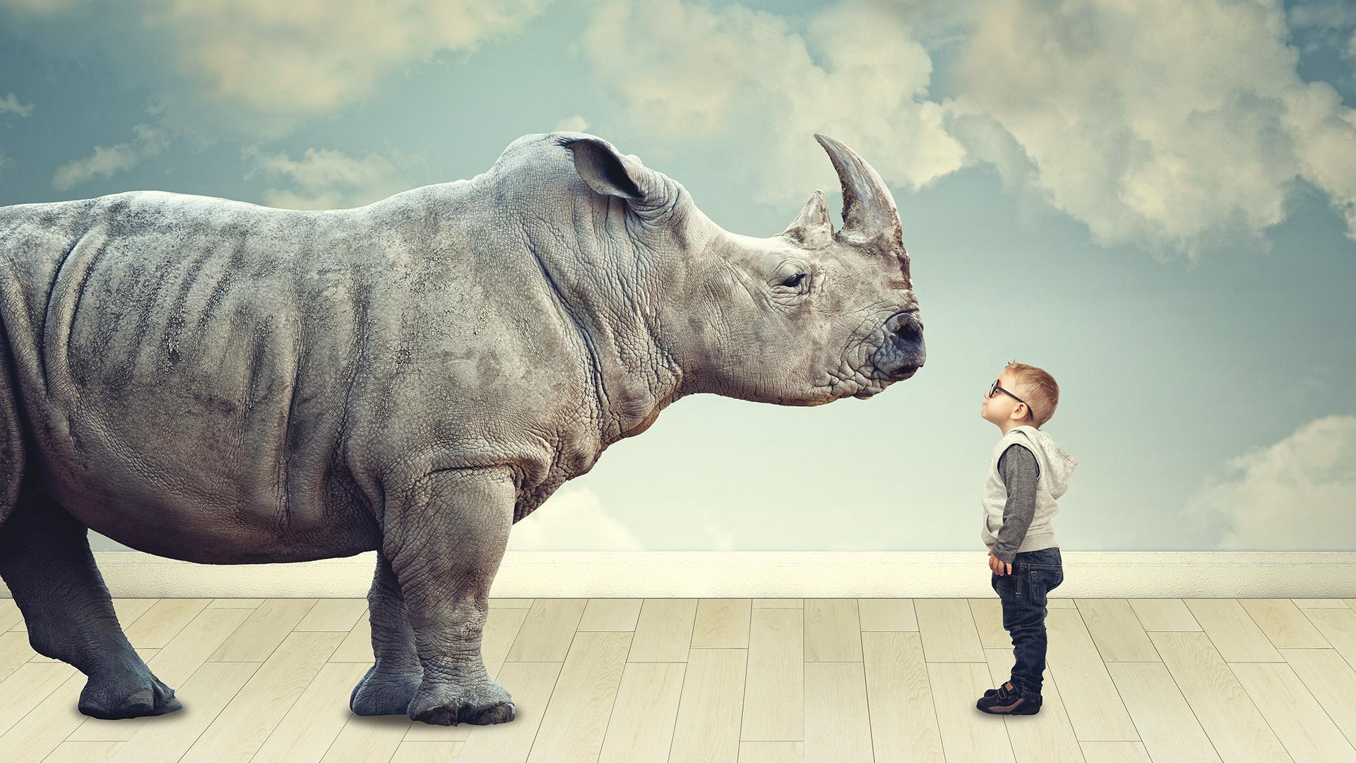 Il Rinoceronte de Il Mercatone della Ceramica
